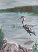 Heron Pastels - Heron in Shallows by Ann Becker