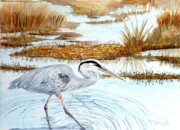 Great Blue Heron Paintings - Heron in the Marsh by Pauline Ross