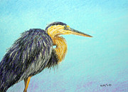 Bird Pastels - Heron by Richard Smith