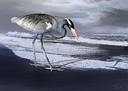 Storm Prints Digital Art Posters - Heron taking his afternoon Beach walk Poster by Danuta Bennett