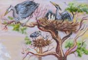 Wyoming Paintings - Herons at Nests by Dawn Senior-Trask
