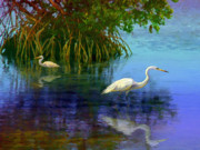 Key West Mixed Media - Herons in Mangroves by David  Van Hulst