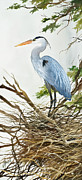 James Williamson Bird Prints Prints - Herons Nest Print by James Williamson