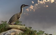 Paleoart Prints - Hesperornis by the Sea Print by Daniel Eskridge