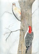 Woodpeckers Paintings - Hi there by Penrith Goff