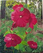 Hibiscus 2 Print by Sharon  De Vore