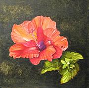 Elizabeth H Tudor - Hibiscus Dance in the Sun