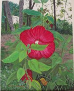 Arkansas Paintings - Hibiscus by Sharon  Gonzalez