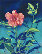 Bright Pastels Posters - Hibisicus Poster by Billie Colson