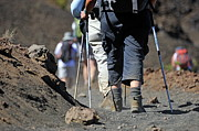 45 Posters - Hickers walking on volcanic dirt in the Haleakala crater Poster by Sami Sarkis