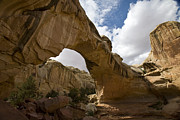 Capital Reef - Hickman Bridge by Timothy Johnson