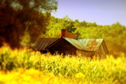 Old Houses Photos - Hidden Amongst the Corn by Emily Stauring