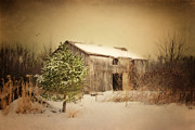 Barn Digital Art Originals - Hidden Away by Mary Timman