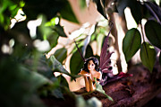 Fairies Art Photos - Hidden fairy on a log by Angelina Cornidez