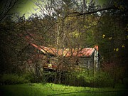 Abandoned Houses Prints - Hidden House in Spring Print by Joyce  Kimble Smith