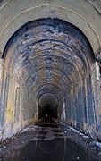 Daysray Photography Framed Prints - Hidden Tunnel Framed Print by Fran Riley