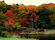 Autumn Landscapes Prints - Hidden Valley Lake Print by Karen Wiles