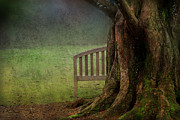Bench Photo Metal Prints - Hide and Seek Metal Print by Rebecca Cozart