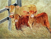 Dana Spring Parish - High Class Cows