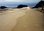 Oregon Dunes National Recreation Area Prints - High Dunes 2 Print by Eike Kistenmacher