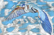 Blue Heron Drawings Prints - High Flying Print by Don  Gallacher