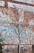 Nyc Graffiti Prints - High Line Palimpsest Print by Rona Black