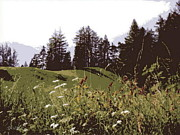 Lichtenstein Photos - High Mountain Paradise by Steamy Raimon