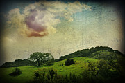 Textured Landscape Prints - Higher Love Print by Laurie Search