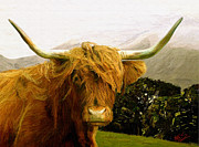 Scottish Digital Art - Highland cattle by James Shepherd