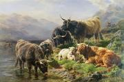 Stream Painting Posters - Highland Cattle Poster by William Watson