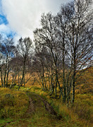 Glen Etive Prints - Highland highway Print by Gary Eason