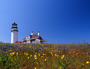 Pictures Of Spring Posters - Highland Lighthouse Cape Cod Poster by Skip Willits