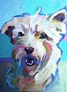 Scottie Portrait Paintings - Highland Terrier by Sara Newton