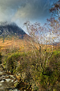 Etive Mor Framed Prints - Highland view in autumn  Framed Print by Gary Eason