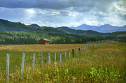 Alberta Foothills Landscape Posters - Highwood Pass Poster by Chris Wulff