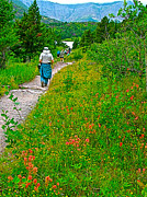 Montana Digital Art - Hiker on Swiftcurrent Pass Trail near Red Rock Lake in Glacier NP by Ruth Hager