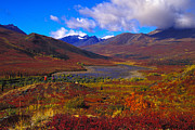Yukon Territory Photos - Hikers In A Valley Blooming With Autumn by Nick Norman