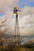 Hill Country Windmill Print by Michael Flood