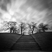 Black And White Photography Metal Prints - Hill, Stairs And Trees Metal Print by Peter Levi