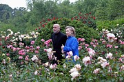 Flower Gardens Prints - Hillary Clinton And Afghan President Print by Everett