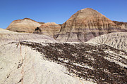 Petrified Forest National Park Prints - Hills And Stripes Print by Adam Jewell