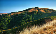 San Luis Obispo Framed Prints - HIlls Of San Luis Obispo III Framed Print by Steven Ainsworth