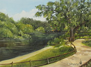 Florida Paintings - Hillsborough River by Larry Whitler