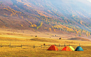Tent Framed Prints - Hillside Camping In Hemu, Xinjiang China Framed Print by Feng Wei Photography