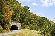 Susan Leggett Metal Prints - Hillside Tunnel Metal Print by Susan Leggett