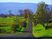 Northern Virginia Photos - Hilly Mountain Road by Joyce  Kimble Smith