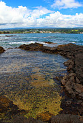Hilo Framed Prints - Hilo Bay from Coconut Island Framed Print by Kerri Ligatich