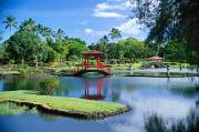 Waterfalls Rivers And Lakes - Hilo, Liliuokalani Garden by Greg Vaughn - Printscapes