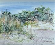 Fauna Originals - Hilton Head Beach Fauna by P Anthony Visco