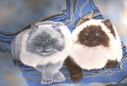 Felines Paintings - Himalayan Cats  by Debbie LaFrance